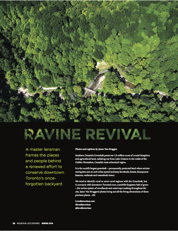 JasonvanBruggen_Ravine_Revival.1